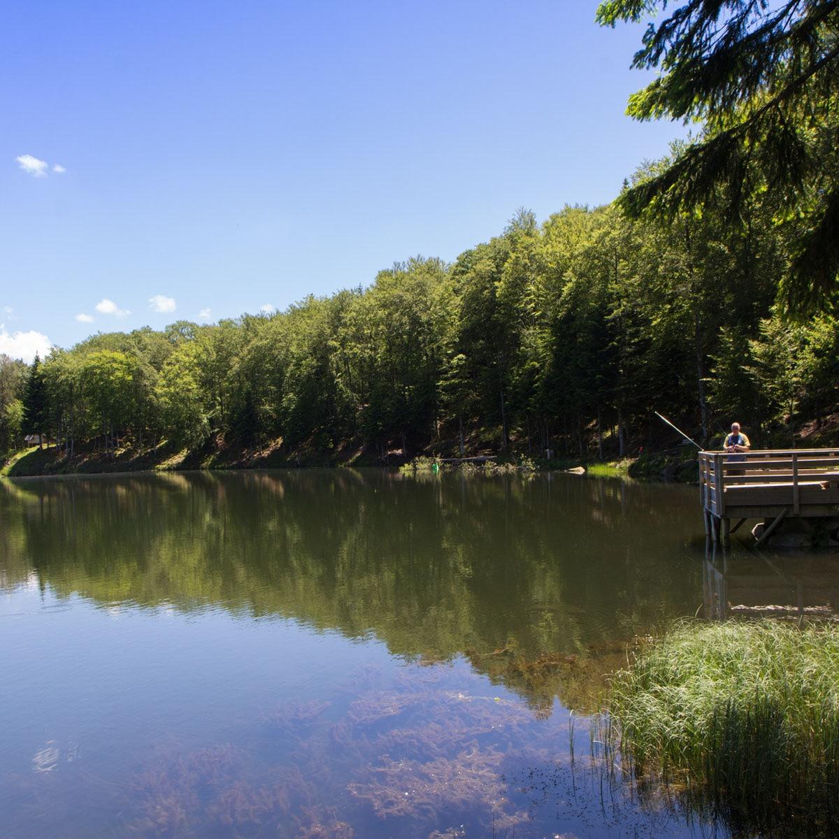 Picherande, le Lac de Gayme